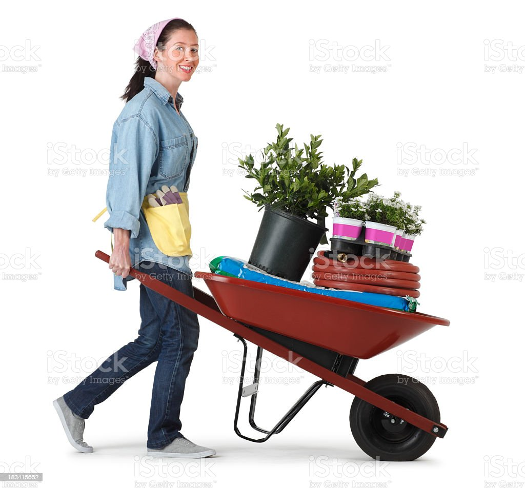 Woman transporting plants and gardening implements in a wheel barrow royalty-free stock photo