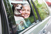 woman traveling by car with a dog