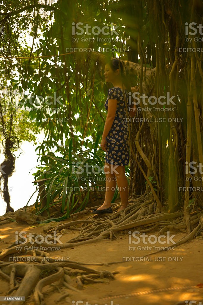 Woman Under Tree on Jade Island in Hanoi, Vietnam. stock photo