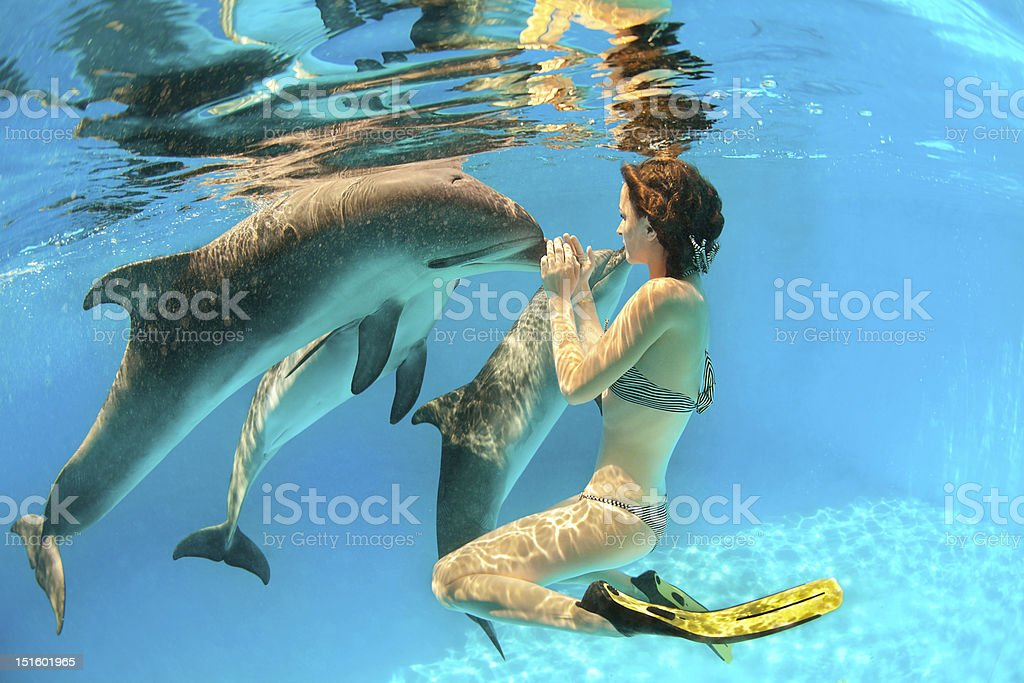 Woman underwater interacting with three dolphins stock photo