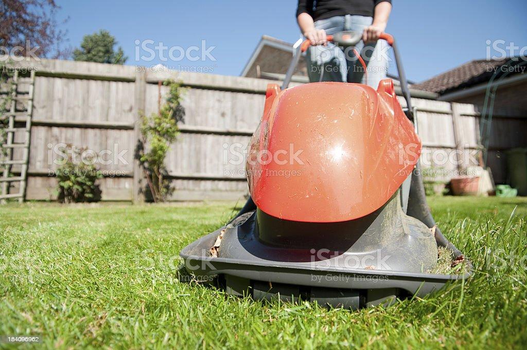 Woman using hover mower in garden mowing lawn summer springtime stock photo