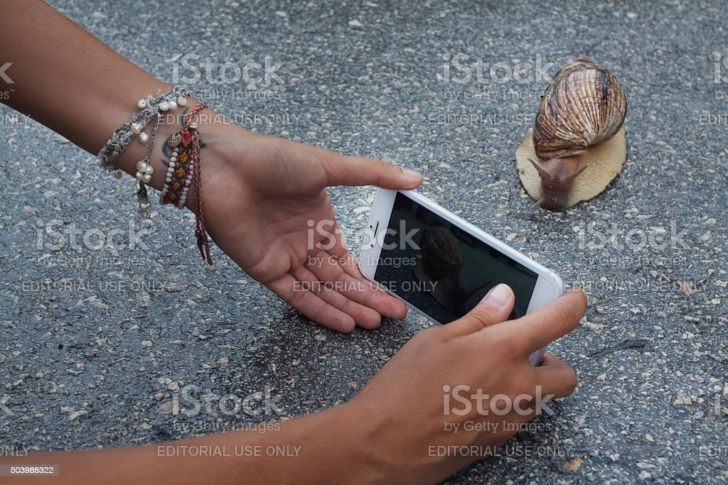 Woman using iPhone stock photo