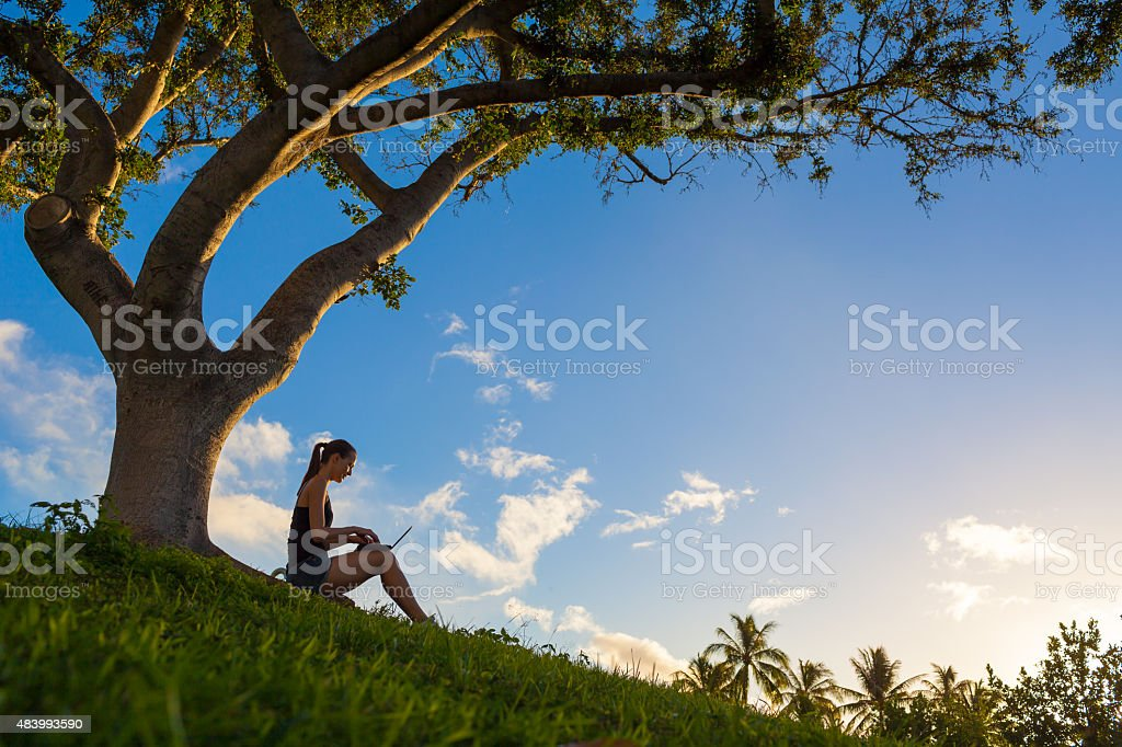 Woman using notebook in the park stock photo
