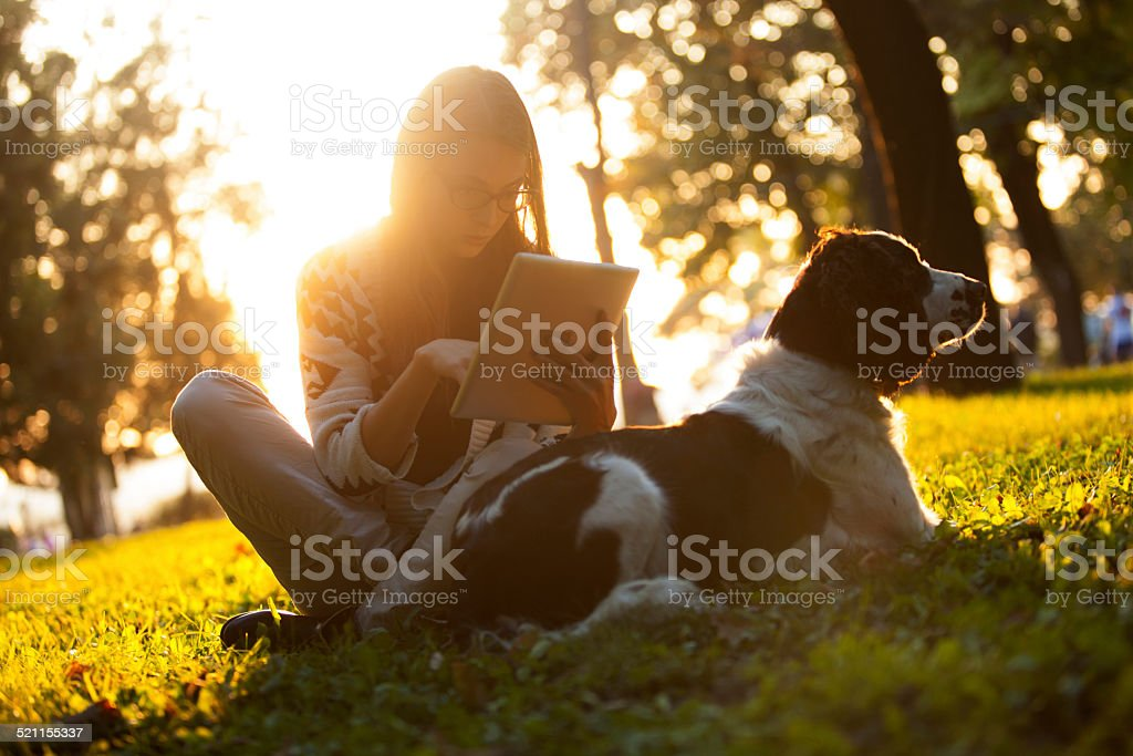 Woman using tablet. stock photo