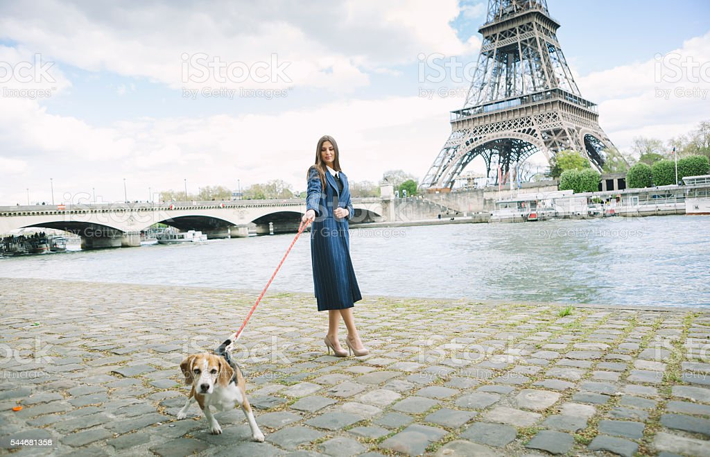 Woman Walking A Cute Beagle By The Seine River stock photo