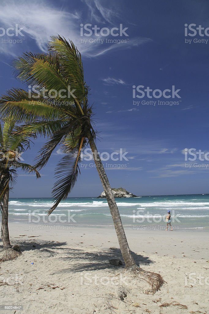 Woman Walking Alone on Tropical Beach With Palm Trees stock photo