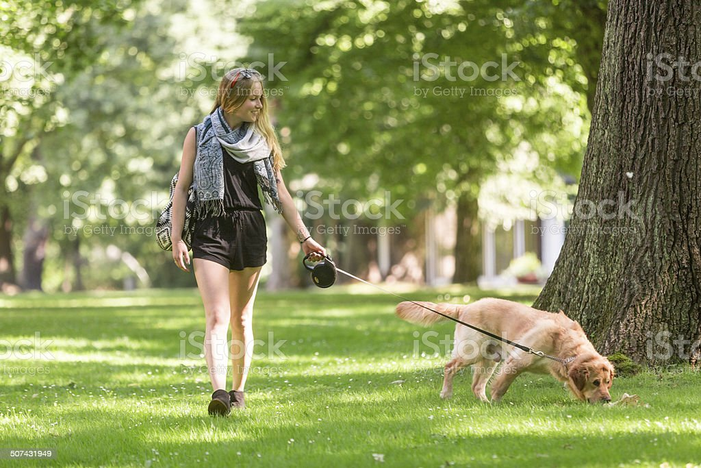 Woman walking dog in park stock photo