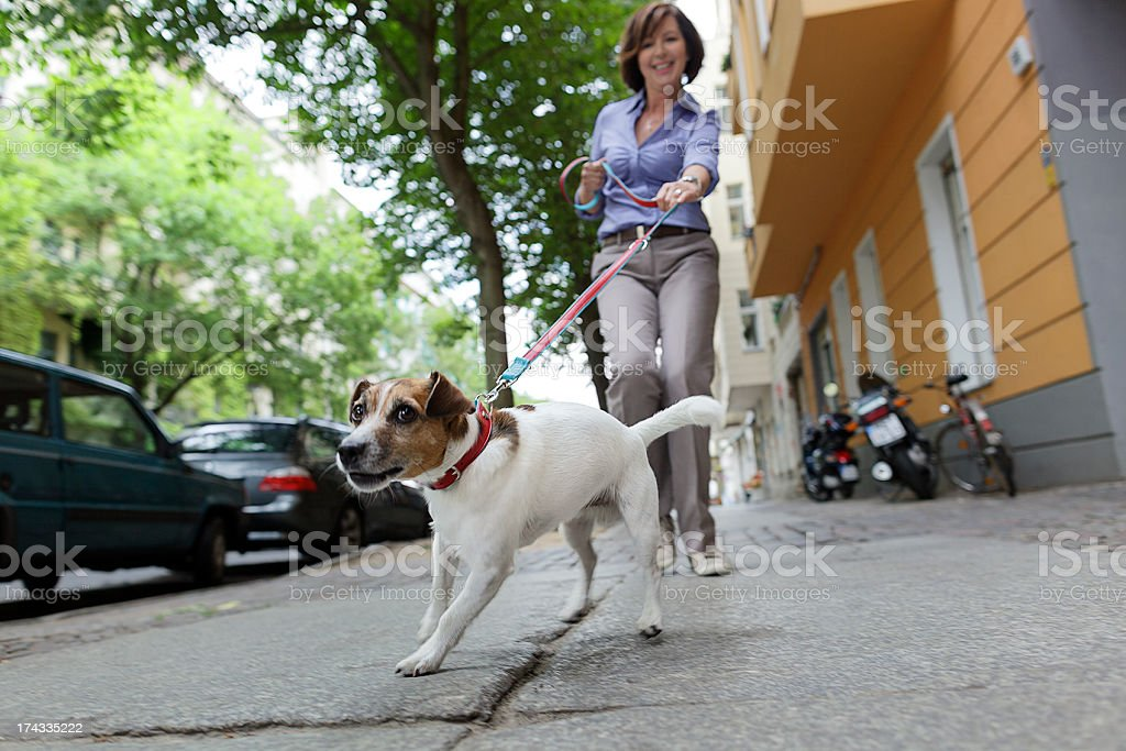 Woman Walking Dog on a City Street stock photo