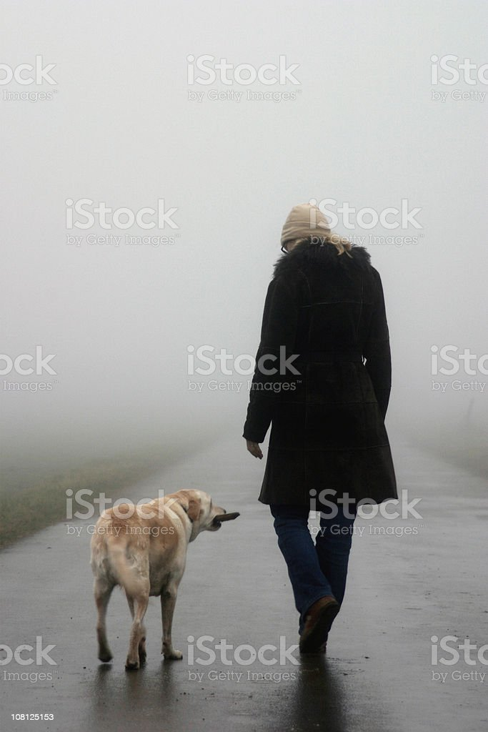 Woman Walking Dog on Misty Cold Day royalty-free stock photo