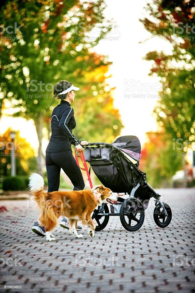 Woman Walking Dog stock photo