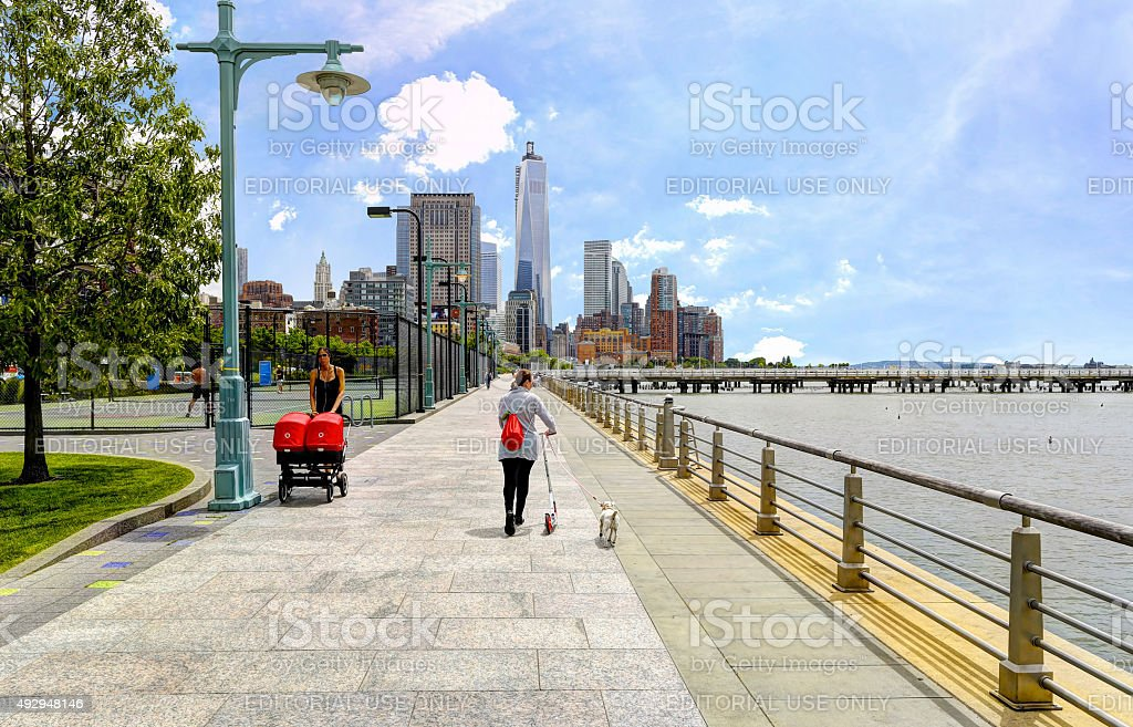 Woman walking dogs on Hudson River Greenway stock photo