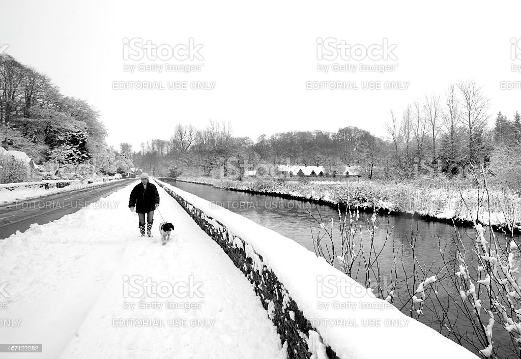 Woman walking her pet dog along the River Coln stock photo