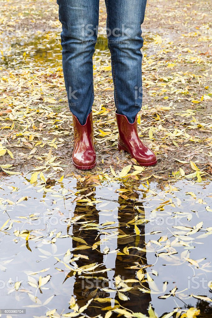 Woman walking in a park with puddles and yellow leaves stock photo