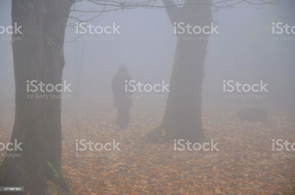 Woman walking in the fog royalty-free stock photo