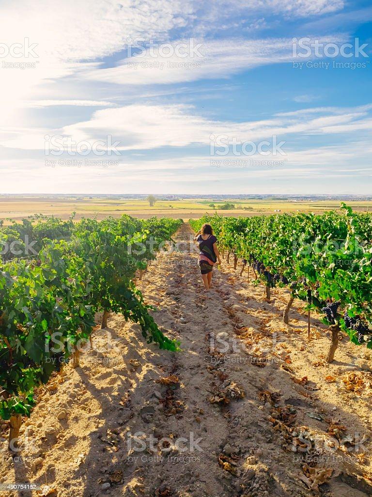 Mulher caminhando em vinhedo foto royalty-free