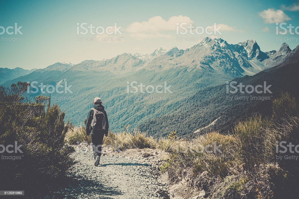 Woman Walking on Footpath at Key Summit Lookout Trail stock photo