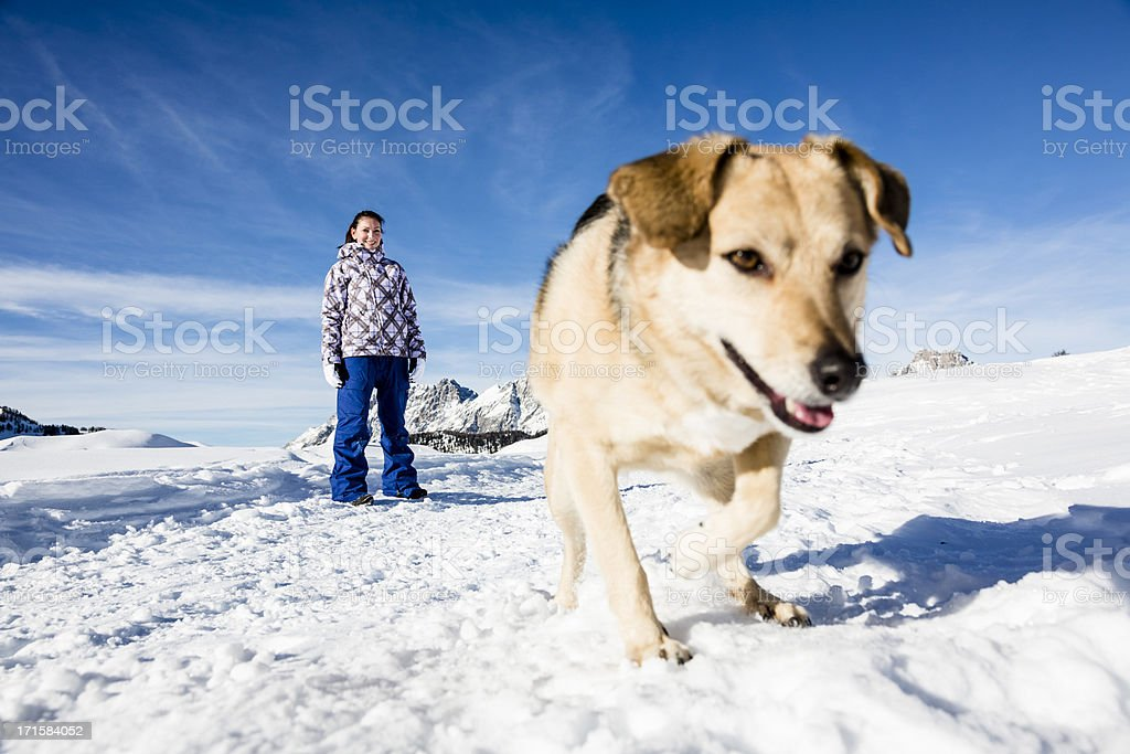 Woman walking on snowy landscape with her dog royalty-free stock photo