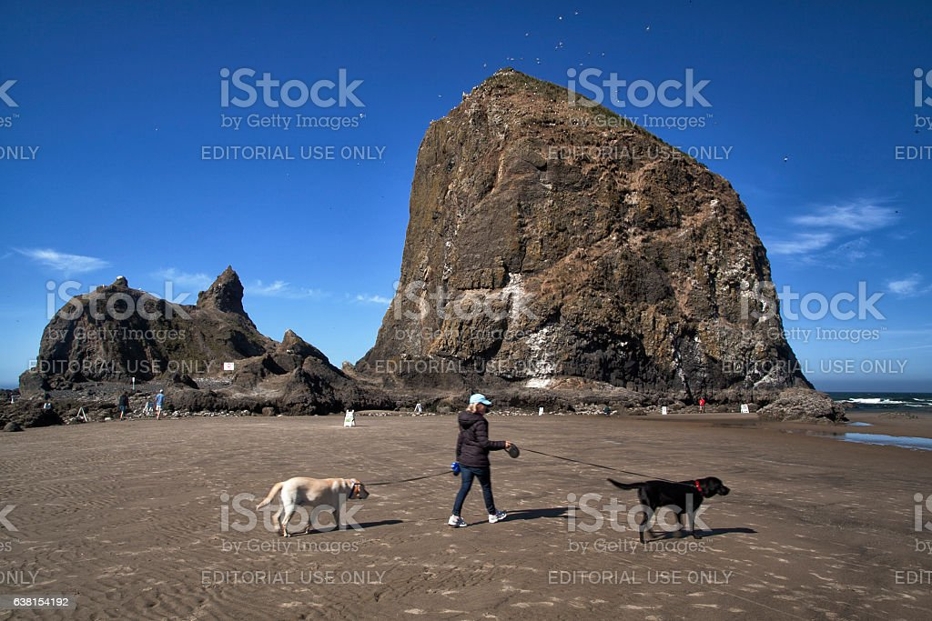 Woman walking two dogs at Cannon beach in the morning stock photo