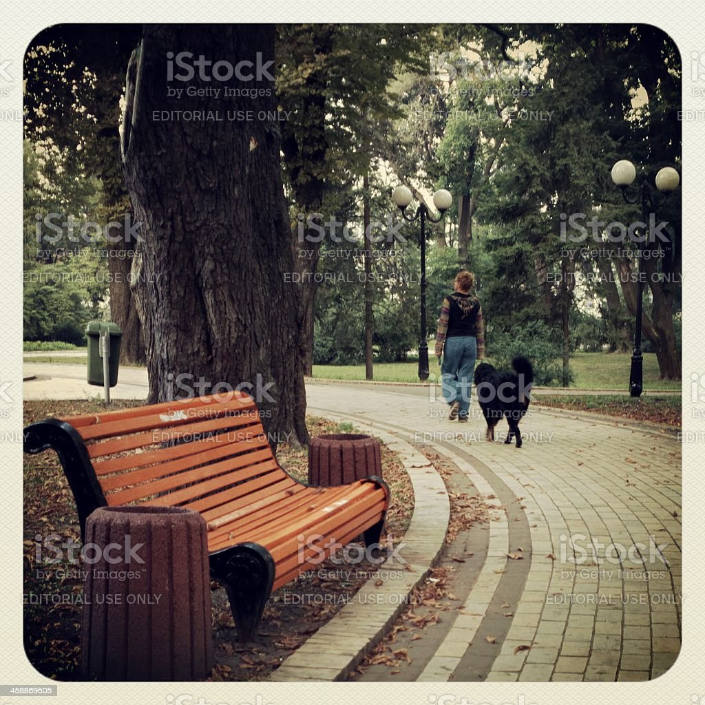 Woman walking with dog. stock photo