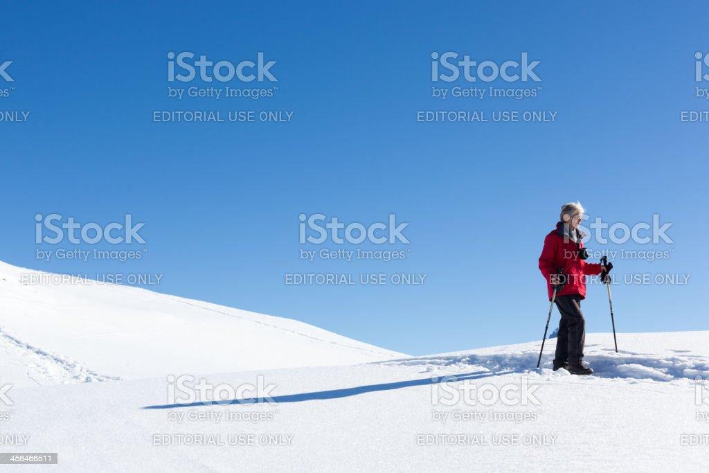 Woman Walks in the Snow stock photo