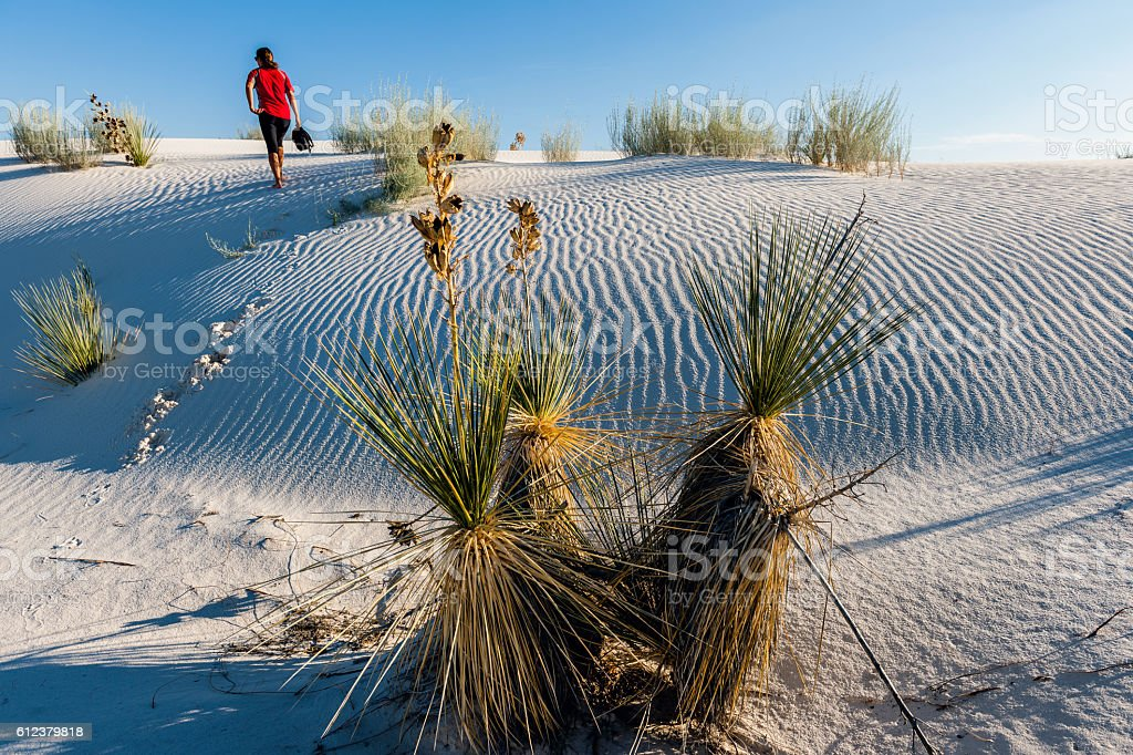 Woman walks in White Sands National Monument USA stock photo