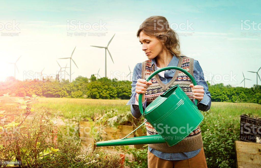 Woman watering plants with wind farm behind stock photo