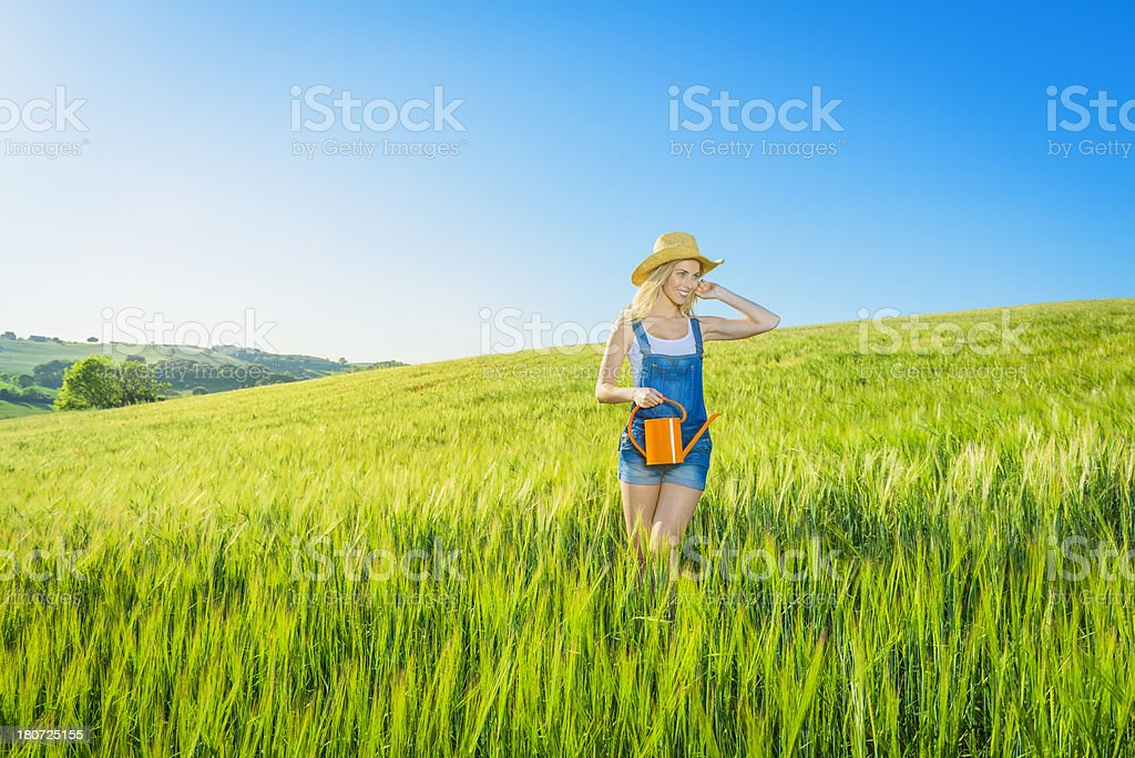Woman watering wheat field royalty-free stock photo
