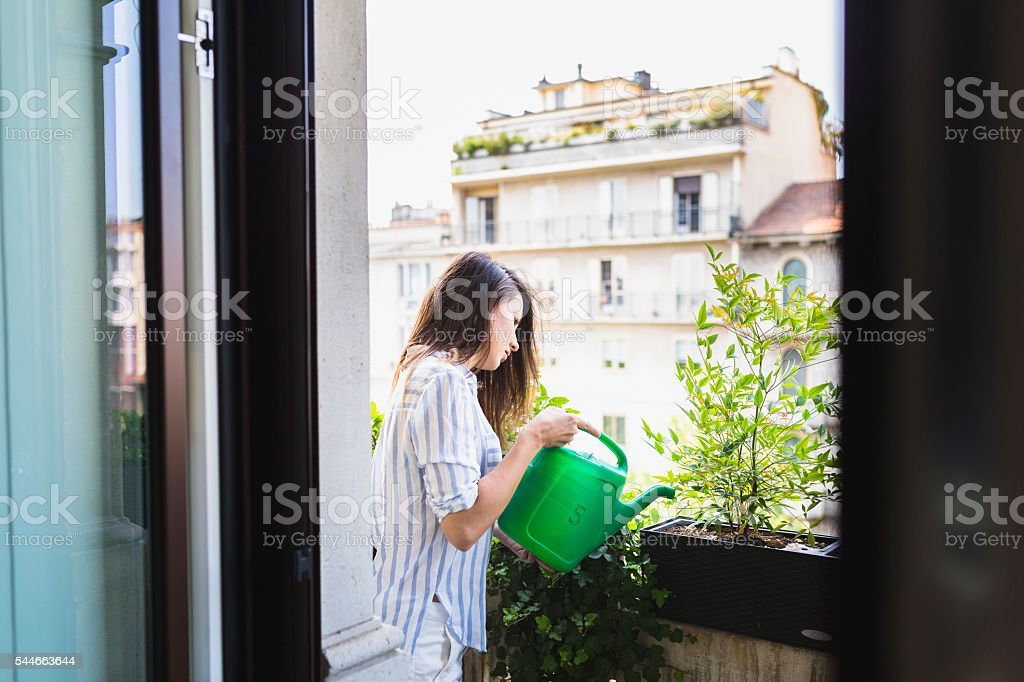 Woman watering your plants stock photo