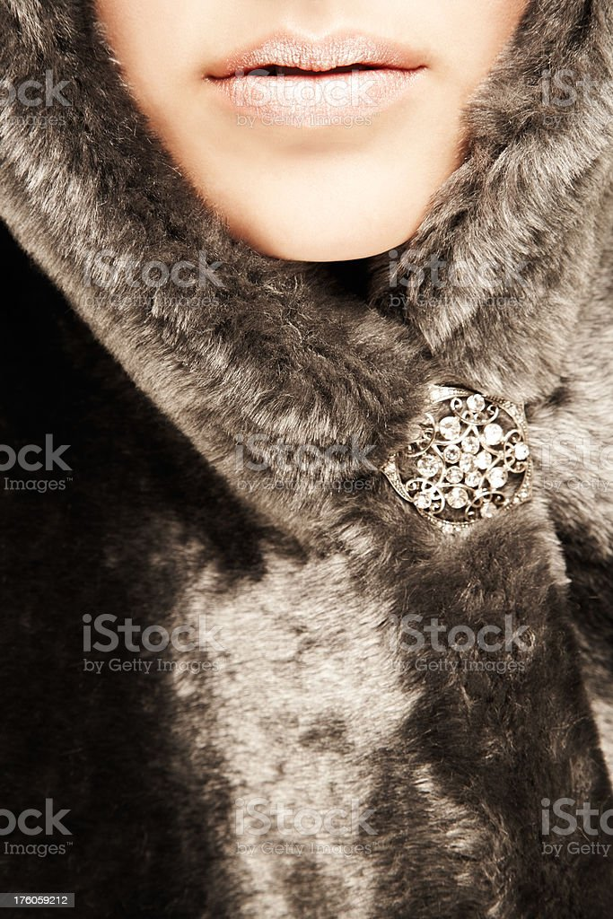 Woman Wearing Fur with Brooch stock photo