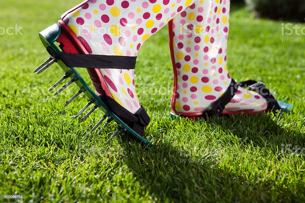 Woman wearing spiked lawn revitalizing aerating shoes, gardening stock photo