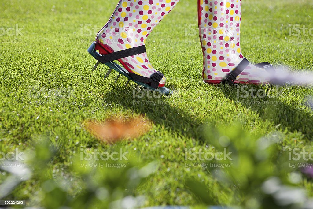 Woman wearing spiked lawn revitalizing aerating shoes royalty-free stock photo
