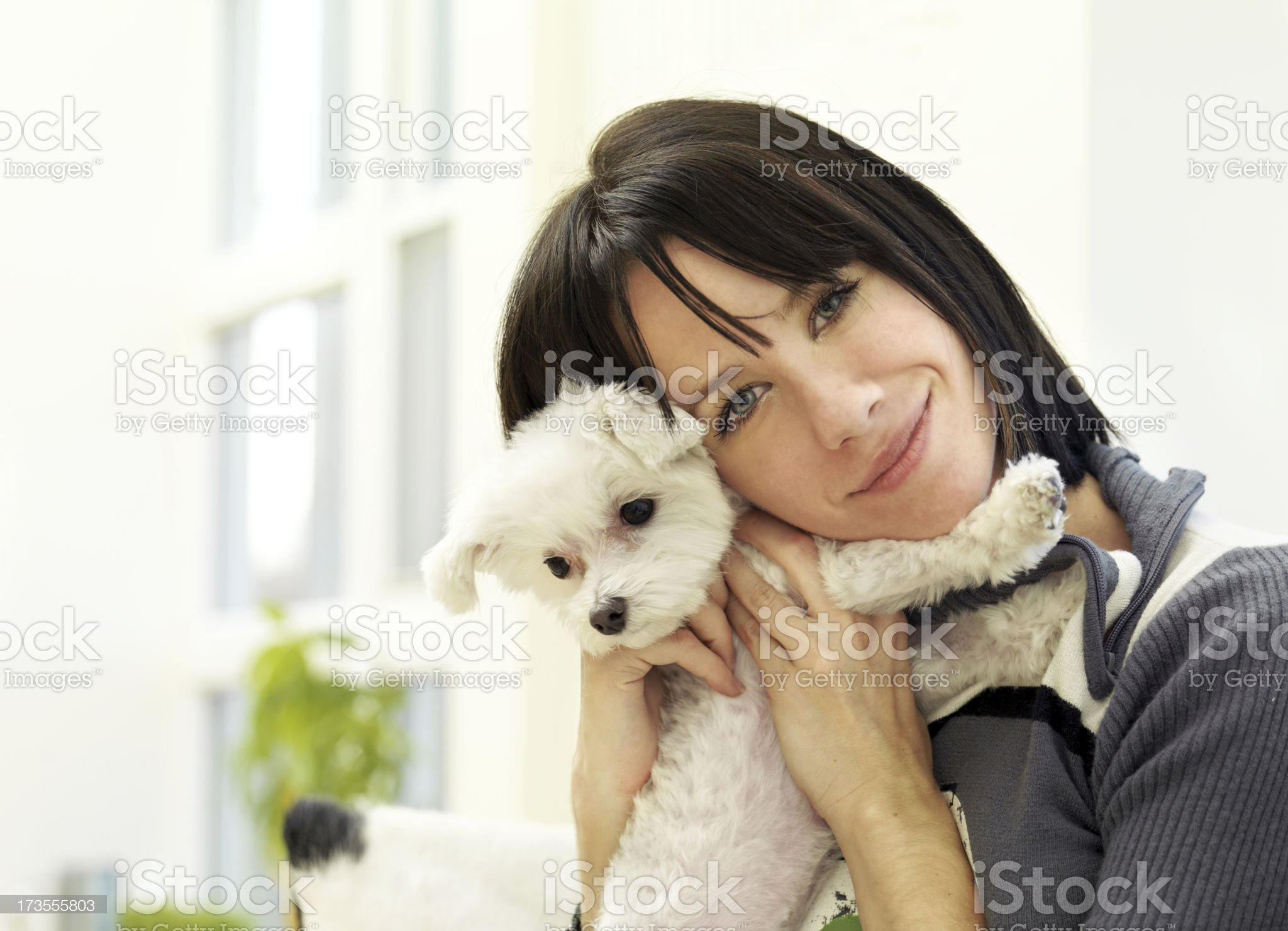 Woman with a dog royalty-free stock photo