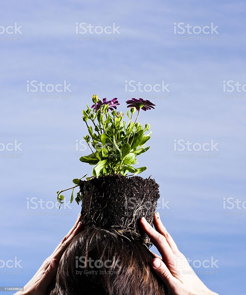 Woman with a plant on her head stock photo
