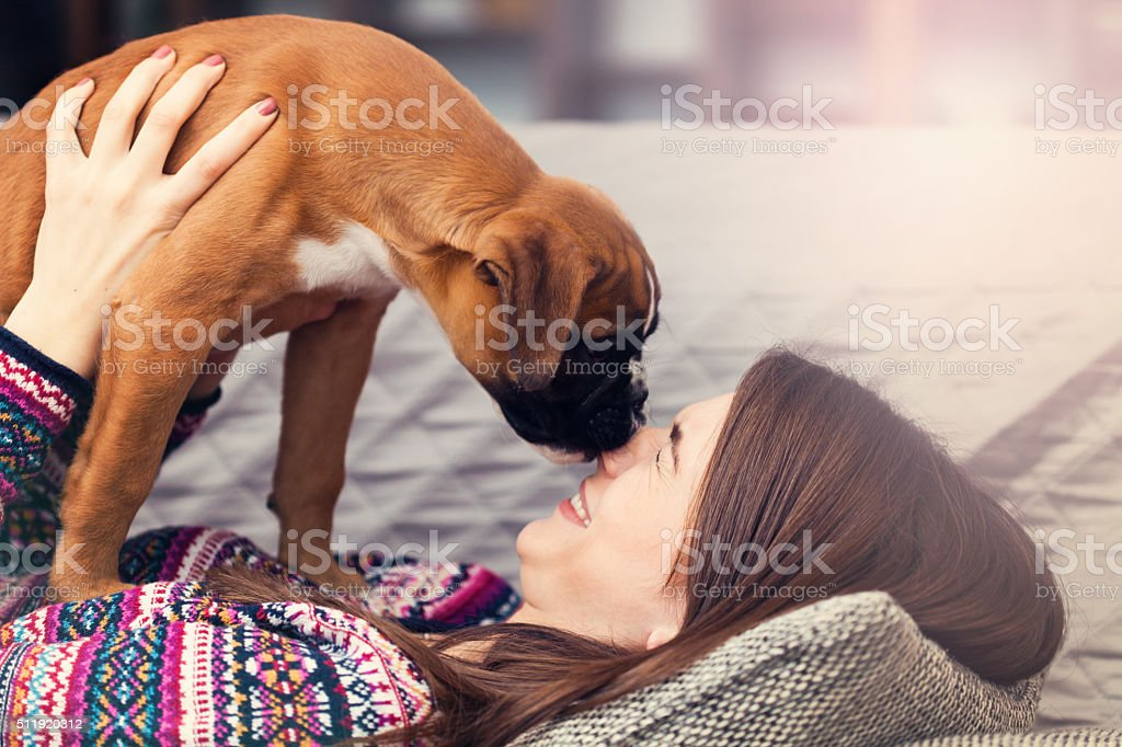 Woman with a puppy stock photo