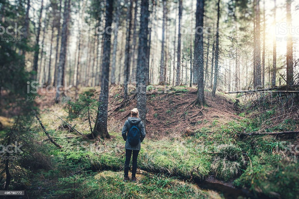Woman With Backpack Hiking In The Forest stock photo