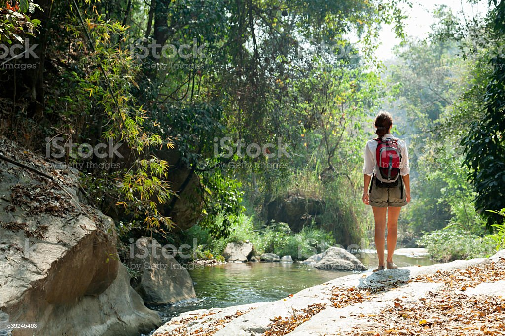 Woman with backpack trekking in rainforest stock photo