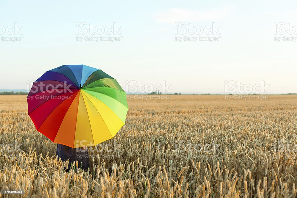 Woman with colorful umbrella in wheat field stock photo