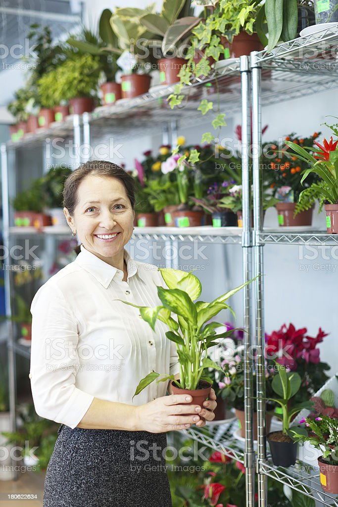 woman with Dieffenbachia  in flower store stock photo