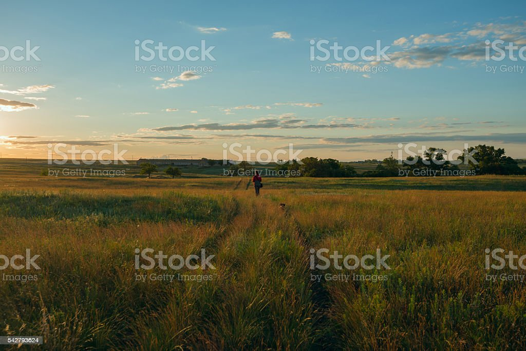 Woman with dog go to the sunset stock photo