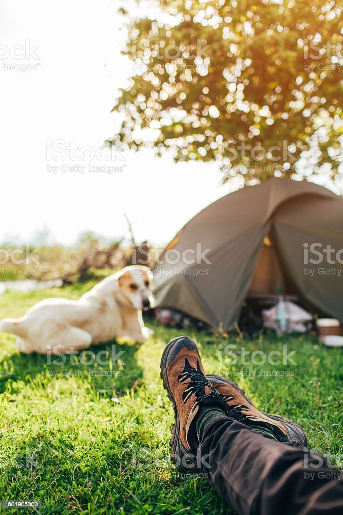 Woman  with dog in camping stock photo