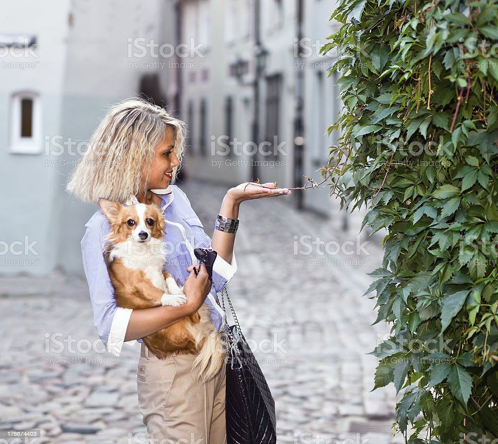 woman with dog in old city royalty-free stock photo