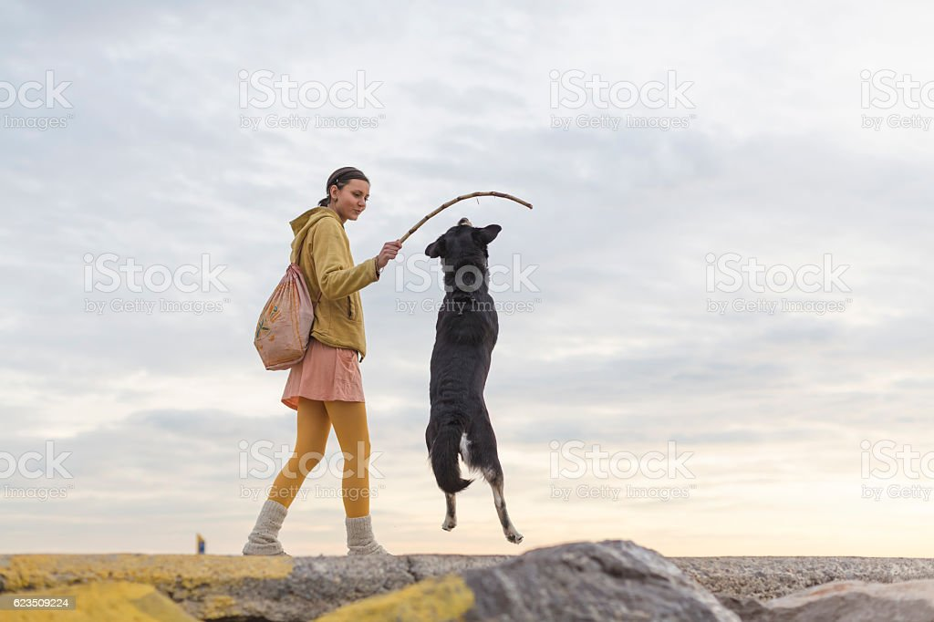 Woman with dog playing on the beach stock photo
