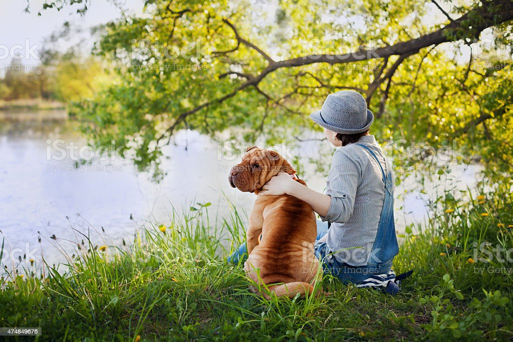 woman with dog Shar Pei back to camera near water stock photo