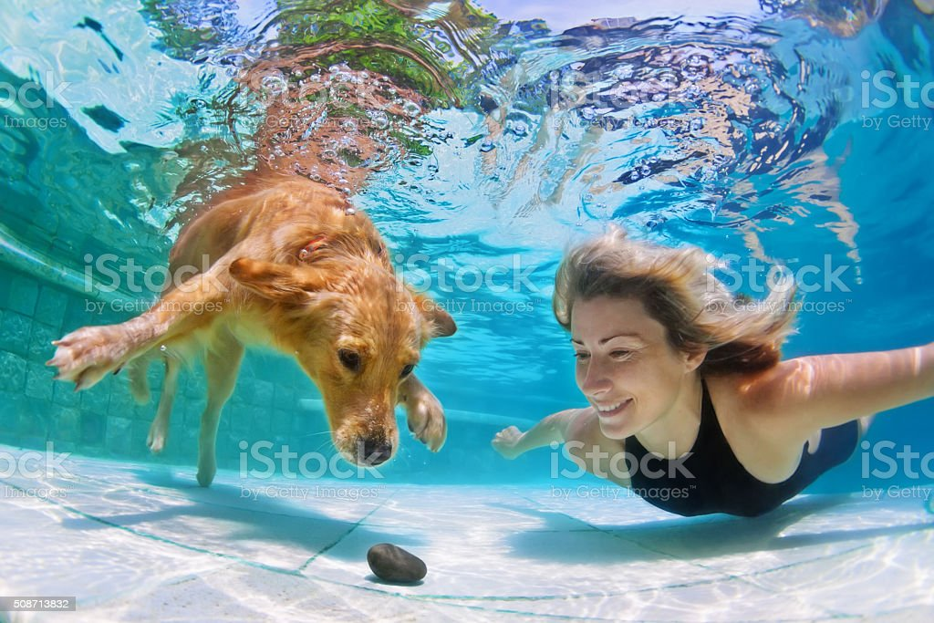 Woman with dog swimming underwater stock photo