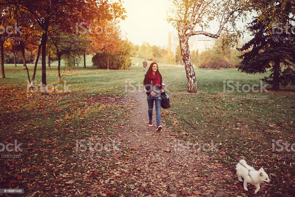 Woman with dog walking in the park stock photo