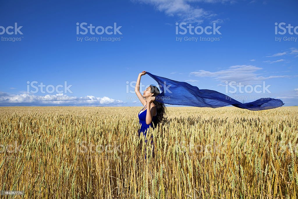 Woman with flying scarf in wheat field royalty-free stock photo