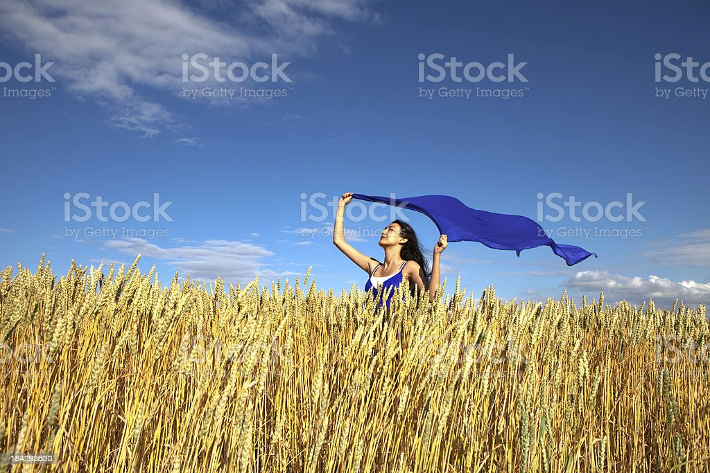 Woman with flying scarf in wheat field stock photo
