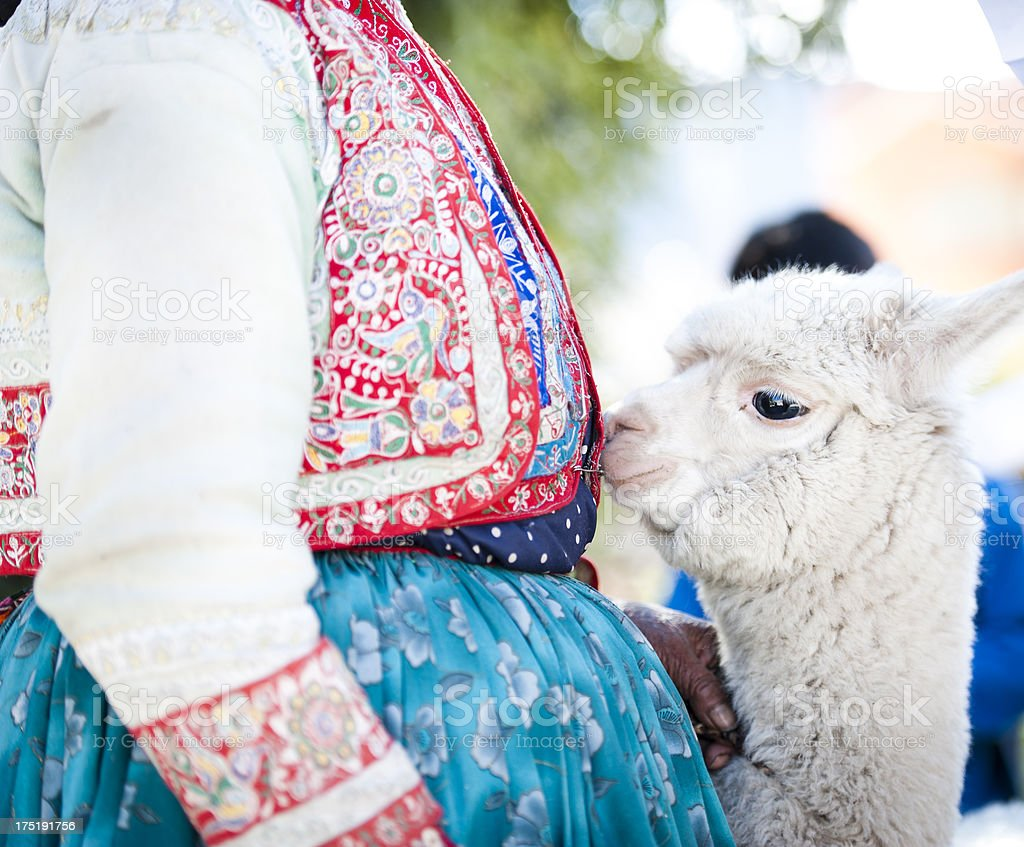 Woman with her Alpaca royalty-free stock photo