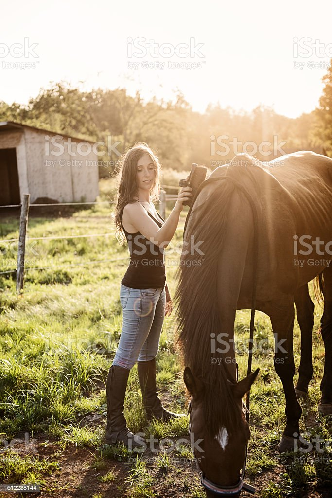 Woman with her horse stock photo