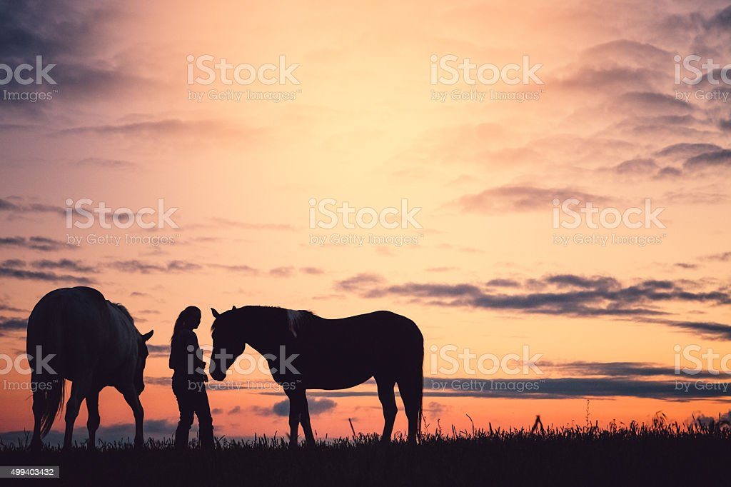 Woman With Horses At Sunset stock photo
